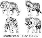 set of vector drawings on the... | Shutterstock .eps vector #1254411217