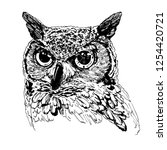 owl graphic on a white... | Shutterstock .eps vector #1254420721
