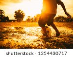 an action sport picture of a... | Shutterstock . vector #1254430717