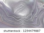 texture of multicolored mother... | Shutterstock . vector #1254479887