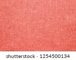 peachy orange or bright coral... | Shutterstock . vector #1254500134