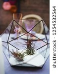 wedding presidium in restaurant ... | Shutterstock . vector #1254532564