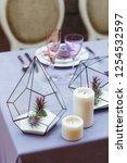 wedding presidium in restaurant ... | Shutterstock . vector #1254532597