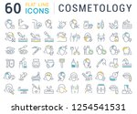 set of vector line icons of... | Shutterstock .eps vector #1254541531
