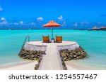 wooden sunbed and umbrella on...   Shutterstock . vector #1254557467