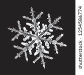white snowflake isolated on... | Shutterstock .eps vector #1254586774
