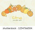 citrus vector set. lemon ... | Shutterstock .eps vector #1254766504