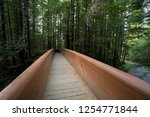 hiking trails at the lady bird... | Shutterstock . vector #1254771844