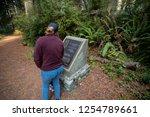 california redwoods national... | Shutterstock . vector #1254789661