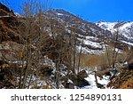 leh ladakh india april 11  ...   Shutterstock . vector #1254890131