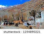 leh ladakh india april 11  ...   Shutterstock . vector #1254890221