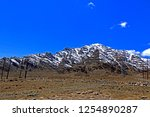 leh ladakh india april 11  ...   Shutterstock . vector #1254890287