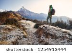 tourist with backpack enjoying... | Shutterstock . vector #1254913444