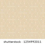 abstract geometric pattern with ... | Shutterstock .eps vector #1254992011