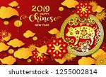 happy chinese new year 2019... | Shutterstock .eps vector #1255002814