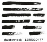 paint brush thin lines high... | Shutterstock .eps vector #1255030477