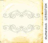 retro baroque decorations... | Shutterstock .eps vector #1255037104