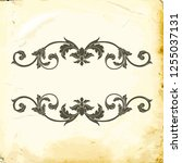 retro baroque decorations... | Shutterstock .eps vector #1255037131