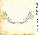 retro baroque decorations... | Shutterstock .eps vector #1255037167