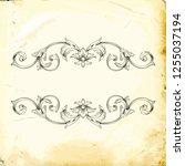 retro baroque decorations... | Shutterstock .eps vector #1255037194