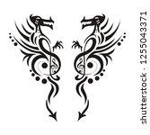 dragon tattoo or emblem... | Shutterstock .eps vector #1255043371