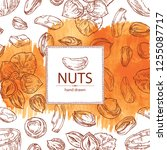 watercolor background with nuts ... | Shutterstock .eps vector #1255087717