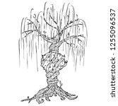 tree icon. vector illustration...   Shutterstock .eps vector #1255096537