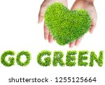 green leaves in heart shape go... | Shutterstock . vector #1255125664