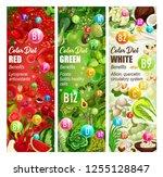 vitamin food of healthy color...   Shutterstock .eps vector #1255128847