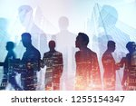 silhouettes of diverse business ... | Shutterstock . vector #1255154347