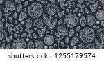 doodle style vector line art... | Shutterstock .eps vector #1255179574