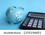 piggy piggy pig is modestly at... | Shutterstock . vector #1255196851