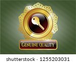 golden emblem or badge with... | Shutterstock .eps vector #1255203031