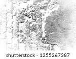 abstract background. monochrome ... | Shutterstock . vector #1255267387