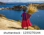 traditional bolivian woman in... | Shutterstock . vector #1255270144