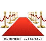 red carpet for celebrity with... | Shutterstock . vector #1255276624