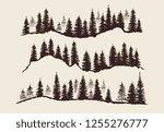 vintage engraving forest.... | Shutterstock . vector #1255276777