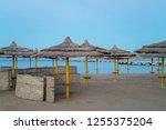 umbrellas with sunbeds on...   Shutterstock . vector #1255375204