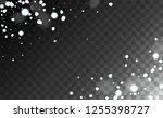 christmas snow flakes... | Shutterstock .eps vector #1255398727