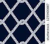 braid pattern. tassel. fringe.... | Shutterstock .eps vector #1255400887
