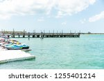 key west  usa   may 1  2018 ... | Shutterstock . vector #1255401214
