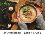 bowl of mushroom cream soup in... | Shutterstock . vector #1255447351