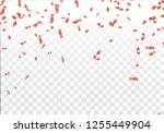 vector illustration celebration ... | Shutterstock .eps vector #1255449904