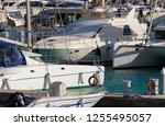 italy  sicily  mediterranean... | Shutterstock . vector #1255495057