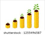 growing columns of coins and... | Shutterstock .eps vector #1255496587