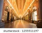 brussels belgium on november 24 ... | Shutterstock . vector #1255511197