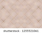 art deco seamless pattern with... | Shutterstock .eps vector #1255521061