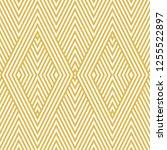 raster geometric lines pattern. ... | Shutterstock . vector #1255522897