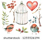 cute watercolor natural floral... | Shutterstock . vector #1255526194