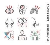allergy symptoms line icons... | Shutterstock .eps vector #1255536931